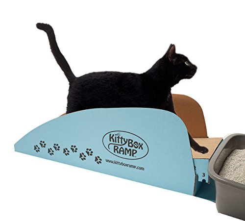 Kitty Box Ramp for cat litter (Cat Litter Box Ramp)