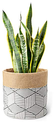 (Mkono Plant Basket Cotton Linen Modern Indoor Planter Up to 12 Inch Pot Double-Faced Flower Pot Cover with Jute Lining for Storage Organizer Home Decor, 13
