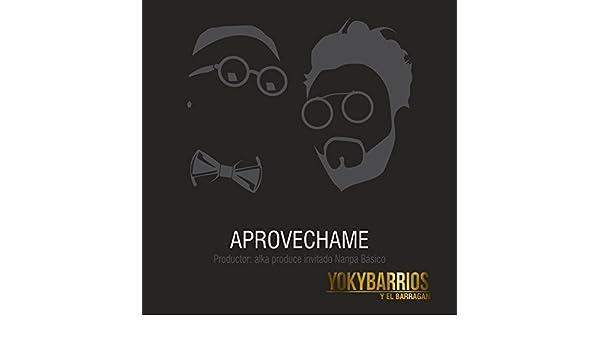 Aprovéchame - Single de Yoky Barrios & Nanpa Básico en ...