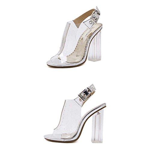 SHEO sandalias de tacón alto Zapatos transparentes de tacón alto de mujer con grueso talón de cristal con sandalias La Plata