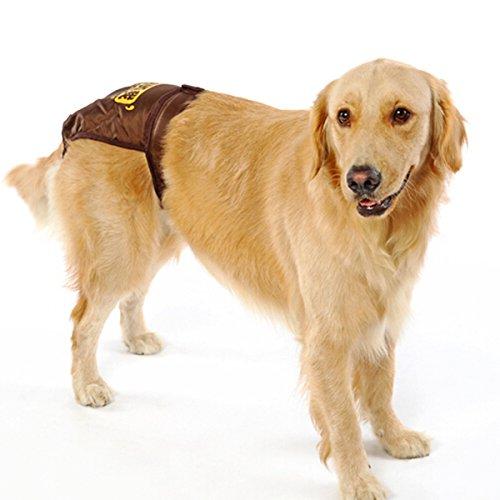 UEETEK Pañales de perro reutilizables Pantalones sanitarios Ropa interior de higiene con las bandas del vientre Ropa interior de perro Underpant para el ...
