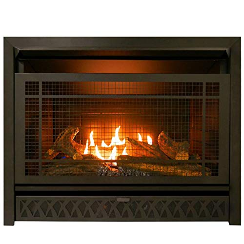 ProCom 29 Inch Vent-Free Dual Fuel Firebox Insert FBNSD28T Gas Fireplace, Large, Black