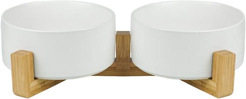 Amazon.com: LIONWEI LIONWELI Cuenco de cerámica para gatos ...