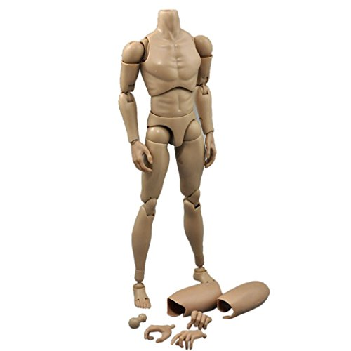 ZYAQ 1/6 Scale Narrow Shoulder Male Action Figure Toys Doll for TTM19 Hot Toys -Height Increasing - Body Action Figure