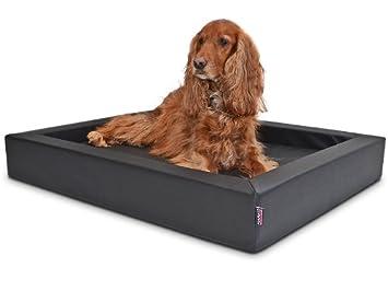 Cama para perros visco Espuma Colchón 120 x 100 - Negro: Amazon.es: Productos para mascotas
