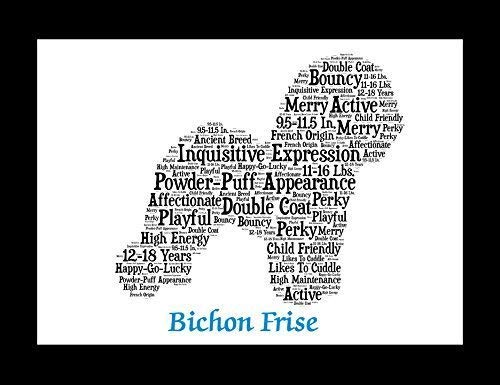 Bichon Frise Dog Wall Art Print - Personalized Pet Name - Gift for Her or Him - 11x14 matted - Ships 1 Day