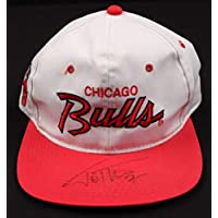 Toni Kukoc Bulls Autographed Signed NBA Sports Specialties Hat - JSA Coa