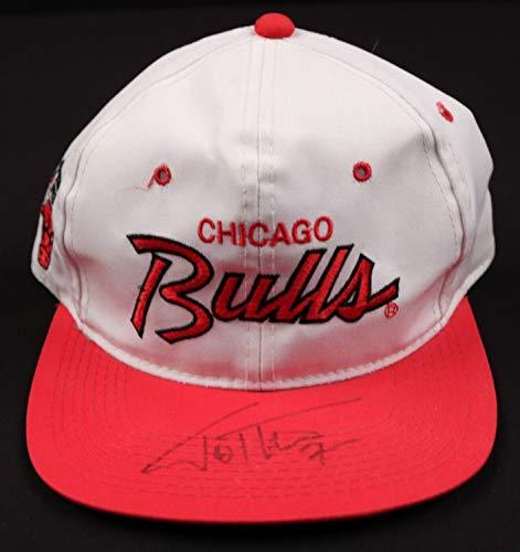 Toni Kukoc Bulls Autographed Signed Nba Sports Specialties