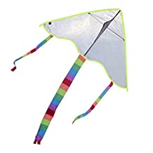 Painting Kite Diy Kite Kite Flying Outdoor Toys For Kids