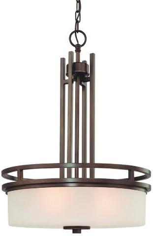 Dolan Designs 2884-62 Three Light Pendant