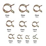 QLOUNI 100Pcs Fuel line Spring Clamp Silicone