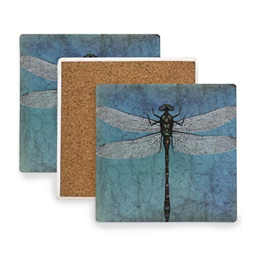 Grunge Vintage Dragonfly Bug Ceramic Coasters for Drinks,Square 4 Piece Coaster Set ()