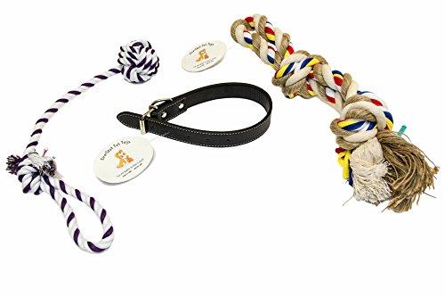 EMG Pet Emporium Dog Collar & Chew Rope Bundle MEDIUM Size Dogs | 18