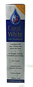 CORAL LLC Coral White Toothpaste Mint Flavor 6 Ounce Tube