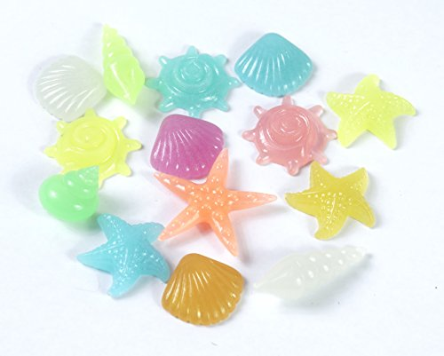 ALL in ONE Glow in the Dark Pebble Conch Shell Stone for Garden Fish Tank (Multicolor-75gram) ()