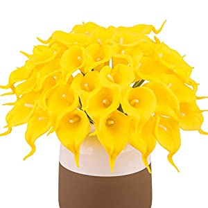 BOMAROLAN Calla Lily Real Touch Bridal Wedding Bouquet Lataexs for Bride Artificial Flowers Birthday Party Home Décor Pack of 24 (Yellow)