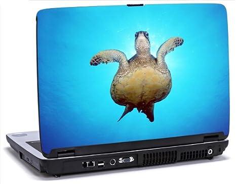 Salida de la luz de tortuga - vinilo adhesivo para portátil para Dell Latitude D620/D630 portátiles: Amazon.es: Electrónica