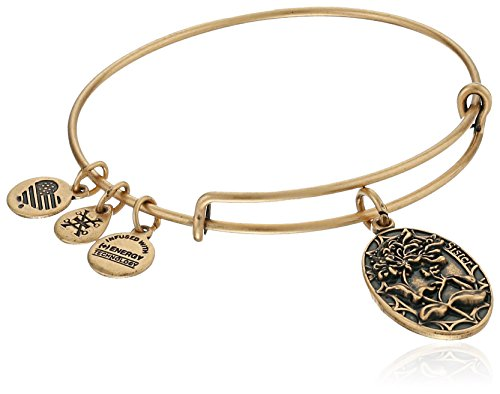 Alex And Ani Because I Love You  Sister Ii Expandable Rafaelian Gold Tone Bangle Bracelet