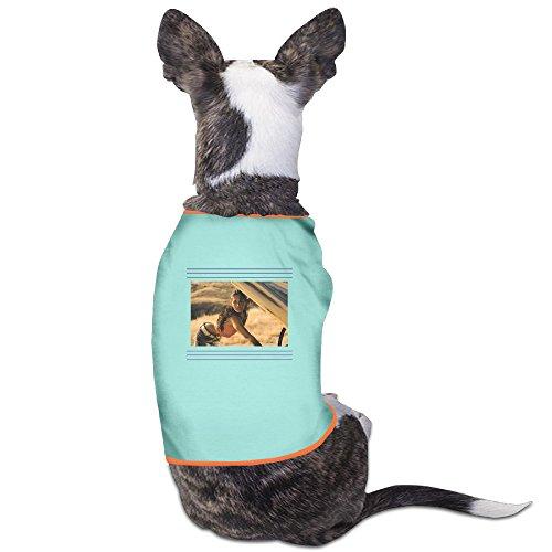 PET-Funny Megan Fox Transformers 3 Sexy Poster Pet Dog Clothing. (Transformers Dog Costume)