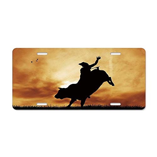 Wonderhorsegala Western Bull Rider Silhouette at Sunset Dramatic Sky Rural Countryside Landscape Rodeo License Plate Cover Auto Truck Car Front Tag Sign Aluminum Metal 12 x 6 in
