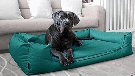 Tierlando Goofy Visco – Cama ortopédica para perro, poliéster, tipo sofá, tallas M L XL XXL XXXL | 90 – 185 cm | 30 colores: Amazon.es: Productos para ...
