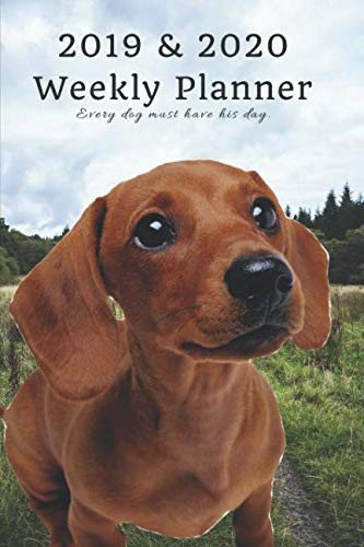 2019 & 2020 Weekly Planner Every dog must have his day.: Cute Dachshund Sausage in Nature: Two Year Agenda Datebook: Plan Goals to Gain & Work to Maintain Daily & Monthly (6 x 9 in; 105 pages)