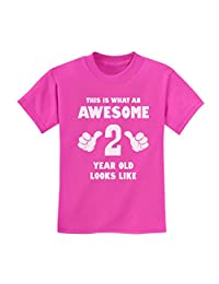 This Is What an Awesome 2 Year Old Looks Like Birthday Funny Novelty T-Shirt
