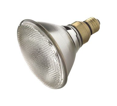 Ace White Halogen Floodlight Bulb Floodlight 60 watts Medium (E26) 1070 lumens PAR38