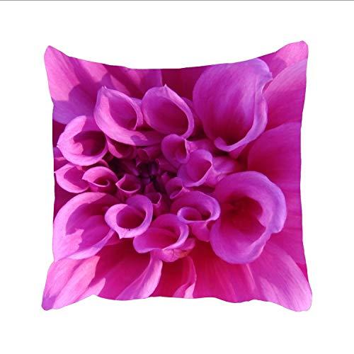 Pinkchrysanthemum Throw Pillow Covers Home Decor Design Cushion Case for Sofa Bedroom Car