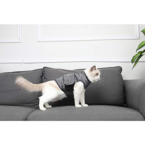 Glorisun Anxiety Shirt for Cats - Professional Keep Calm Cats Clothes - Cat T-Shirt Soothes Muscles, Joints, and Pain