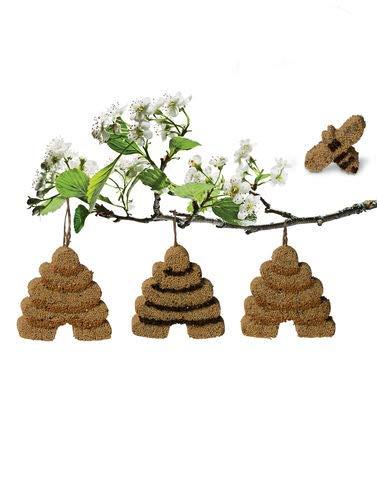 (Gardener's Supply Company Songbird Tweets Birdseed Bee Skep)