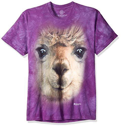 The Mountain Big Face Alpaca