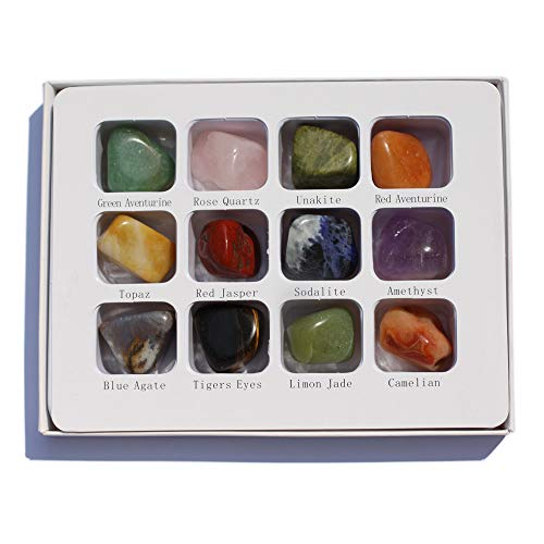 Chillipepperstone 12 Semiprecious Gemstone Box Collection Stones Rock, Natural Polished, 1/2 to 3/4 Inch