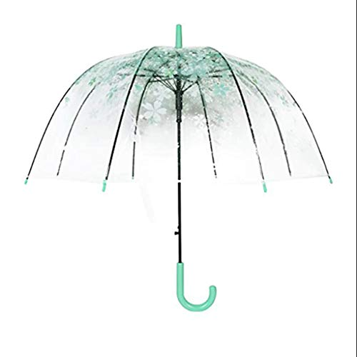 Queen Boutiques Easy to fold Transparent Cherry Umbrella Half-Automatic Floral Blossom Bubble Dome Shape Rain Wind Umbrella (Pink Cherry Blossoms) Rainproof and Windproof (Color : Green) ()
