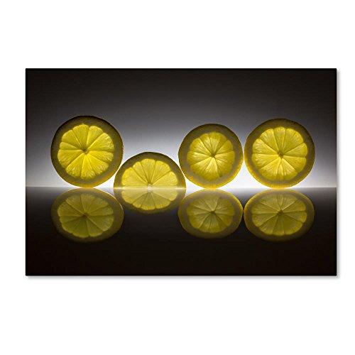 Lemon by Wieteke de Kogel, 12x19-Inch Canvas Wall -