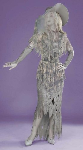 Costumes For All Occasions Fm57477 Ghostly Gal Costume Grey
