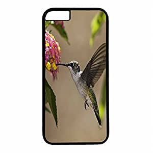 Hard Back Cover Case for iphone 6 Plus,Cool Fashion Black PC Shell Skin for iphone 6 Plus with Bird