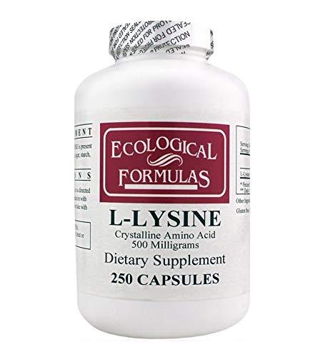 Top L Lysine Amino Acids