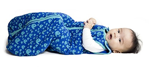 Baby deedee Sleep Nest Tee Baby Sleeping Bag- Playful Whales-Large (Slat Straight 8 Design)