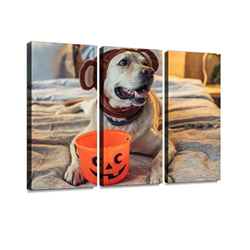 BELISIIS Bear-Dog on Halloween Wall Artwork Exclusive Photography