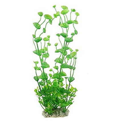 Amazon.com : eDealMax Decoración de la planta Peces de plástico tanque Artificial, 12.6 pulgadas, Verde : Pet Supplies