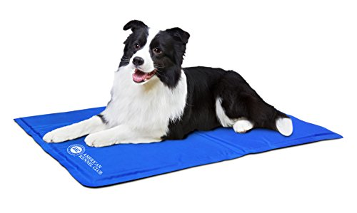 American Kennel Club AKC 620-Tan Pet Cooling Mat