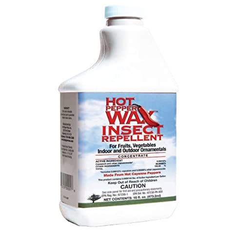 Neptune's Harvest HPI116 Hot Pepper Wax Insect Repellent, 1-Pint (Rain Repellant Spray)