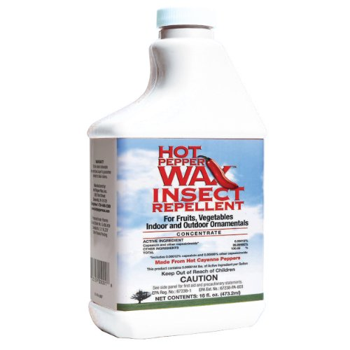 Neptune's Harvest HPI116 Hot Pepper Wax Insect Repellent, 1-Pint