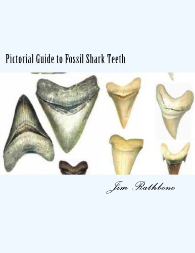 Shark Teeth Prehistoric (Pictorial Guide to Fossil Shark Teeth: Shark Teeth From around the World)