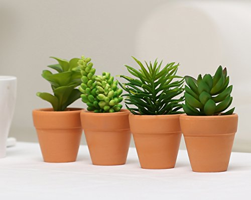 Small Assorted Artificial Succulent Plants in Terra Cotta Clay Planter Pots, Set of 4 (Terra Cotta Pot Artificial)