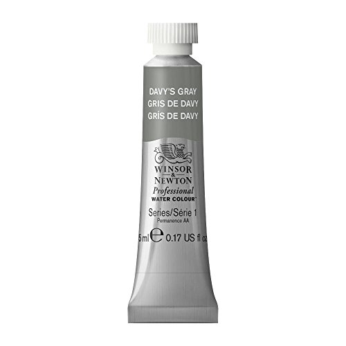 Winsor & Newton Professional Water Color Tube, 5ml, Davy's (Best Gray Paint)