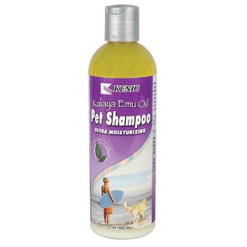 Kalaya Emu Oil Moisturizing Shampoo – 17 oz, My Pet Supplies