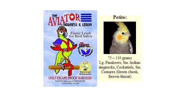 Arnés Aviator Aves y Correa - Tamaño: Pequeño - Color: Rojo ...