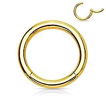 Jiayiqi Unisex Body Piercing Rings Jewelry Stainless Steel Lip Piercing Nose Hoop